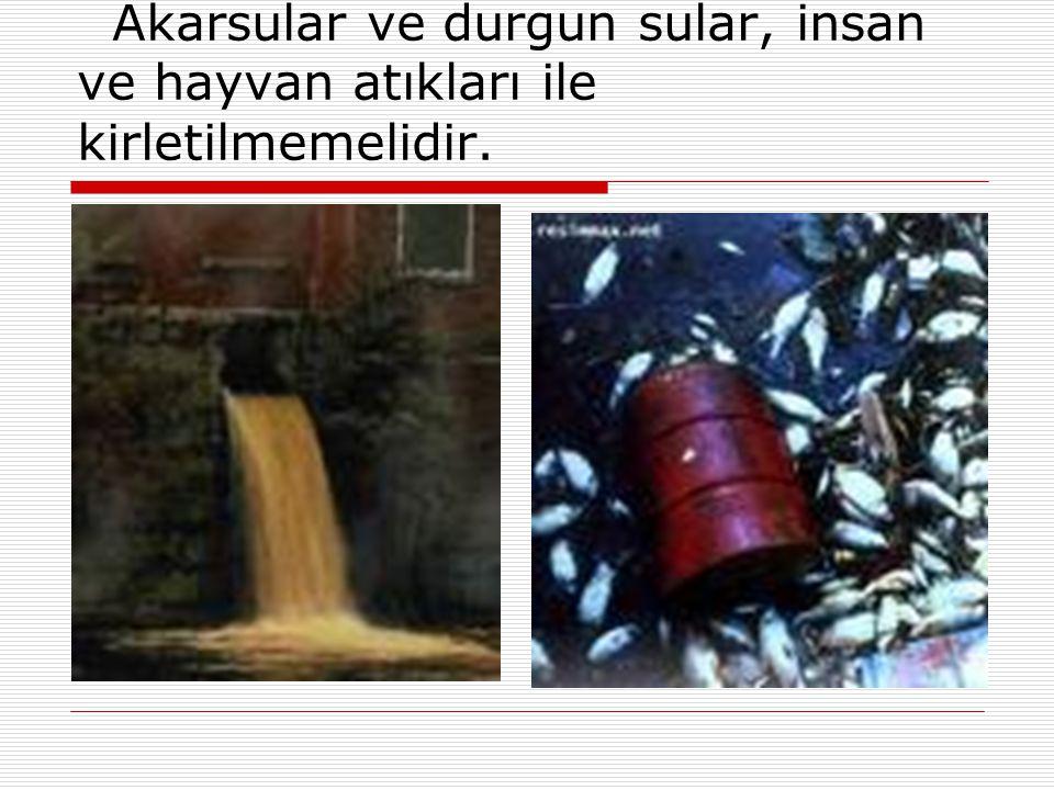 Akarsular ve durgun sular, insan ve hayvan atıkları ile kirletilmemelidir. 