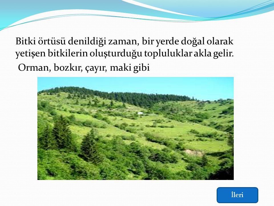 Özge Çınar 122003045 Derse Başla