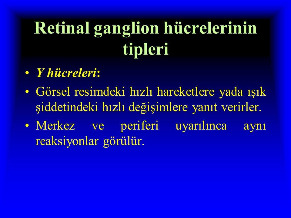 Retinal ganglion hücrelerinin tipleri W hücreleri: Baş ve göz hareketleri ile ilgili impulsları ileterek, doğrultusal hareketleri saptama. Karanlıkta