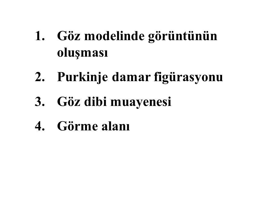 1.Göz modelinde görüntünün oluşması 2.Purkinje damar figürasyonu 3.Göz dibi muayenesi 4.Görme alanı