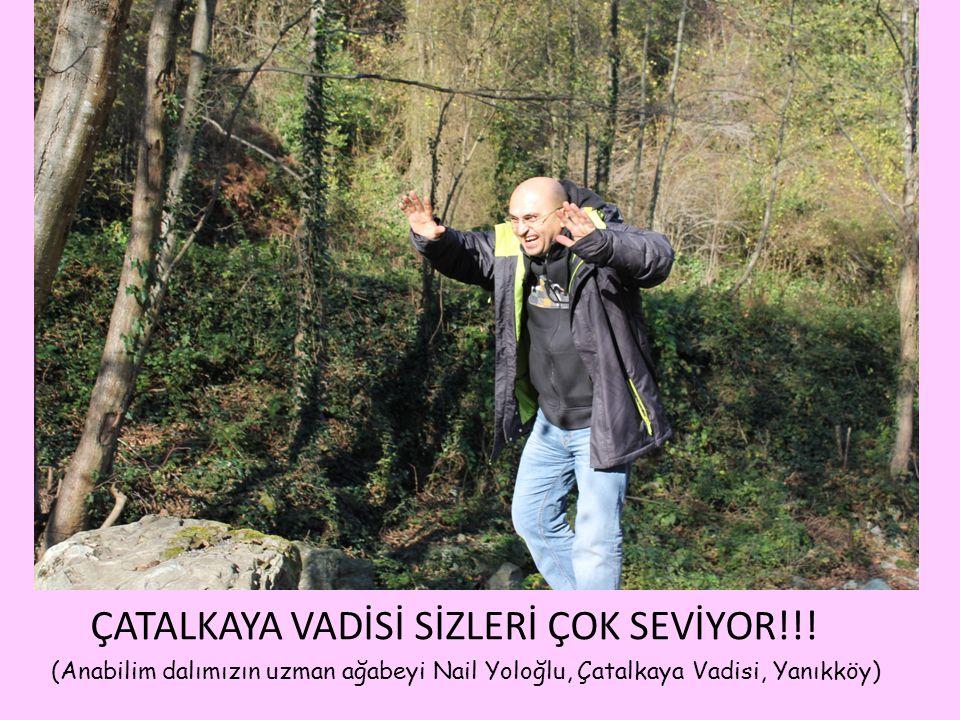 ÇATALKAYA VADİSİ SİZLERİ ÇOK SEVİYOR!!! (Anabilim dalımızın uzman ağabeyi Nail Yoloğlu, Çatalkaya Vadisi, Yanıkköy)