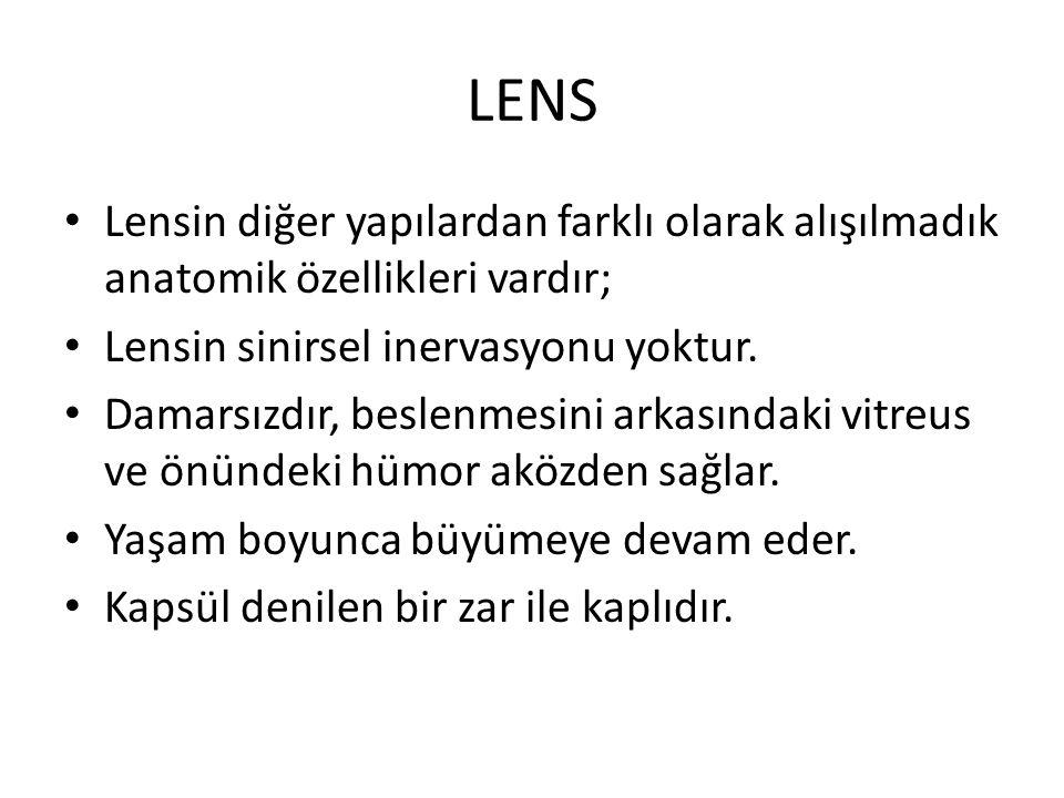 LENS Lensin diğer yapılardan farklı olarak alışılmadık anatomik özellikleri vardır; Lensin sinirsel inervasyonu yoktur. Damarsızdır, beslenmesini arka