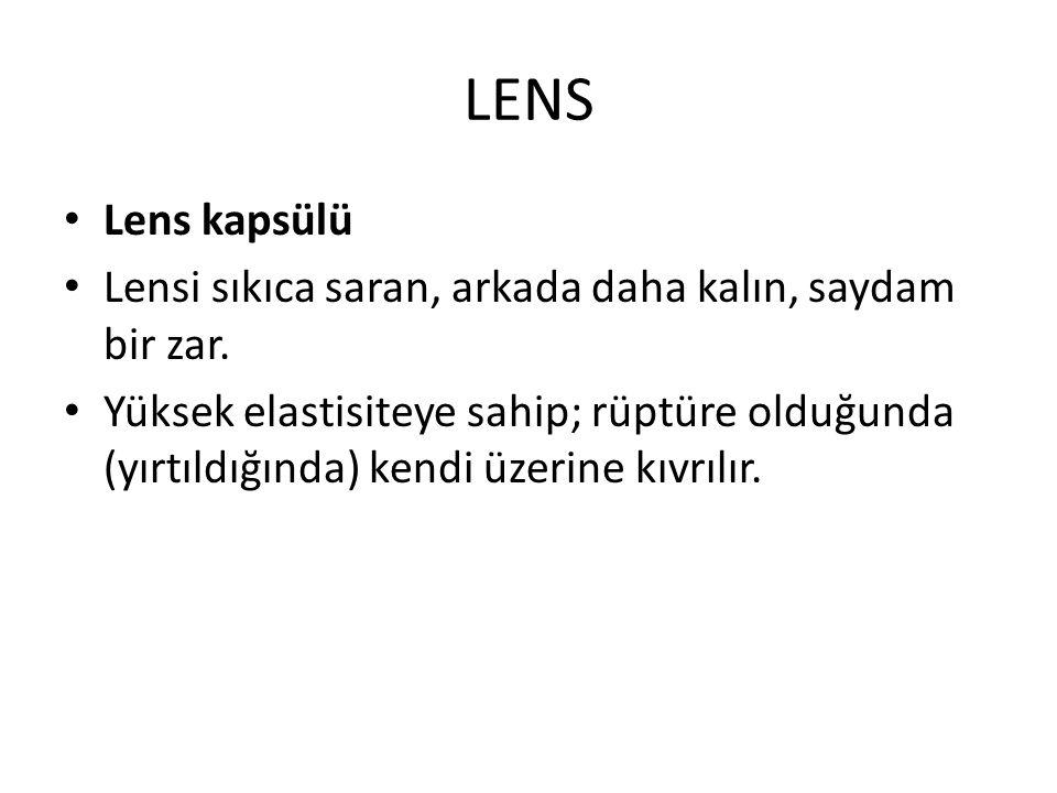 LENS Lens kapsülü Lensi sıkıca saran, arkada daha kalın, saydam bir zar. Yüksek elastisiteye sahip; rüptüre olduğunda (yırtıldığında) kendi üzerine kı