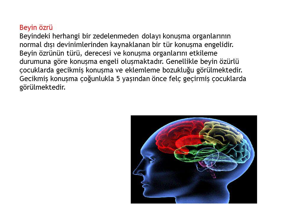 Beyin özrü Beyindeki herhangi bir zedelenmeden dolayı konuşma organlarının normal dışı devinimlerinden kaynaklanan bir tür konuşma engelidir. Beyin öz