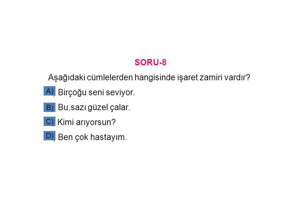 SORU-8 Aşağıdaki cümlelerden hangisinde işaret zamiri vardır.