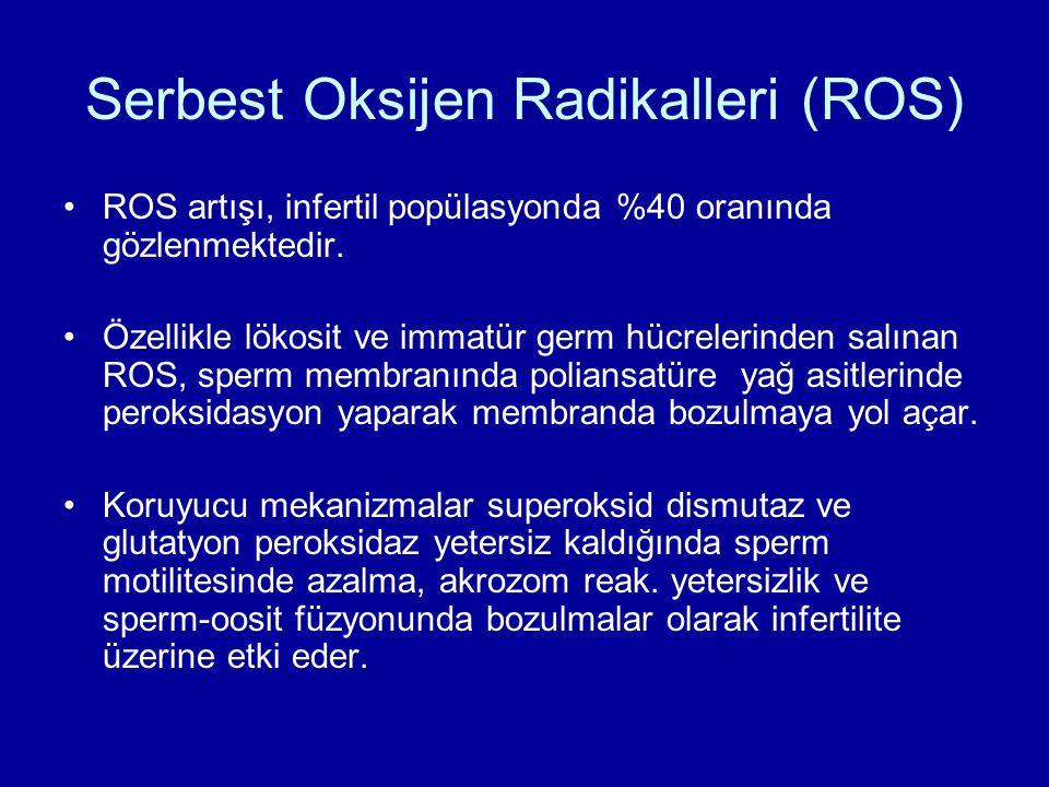 Serbest Oksijen Radikalleri (ROS) ROS artışı, infertil popülasyonda %40 oranında gözlenmektedir. Özellikle lökosit ve immatür germ hücrelerinden salın