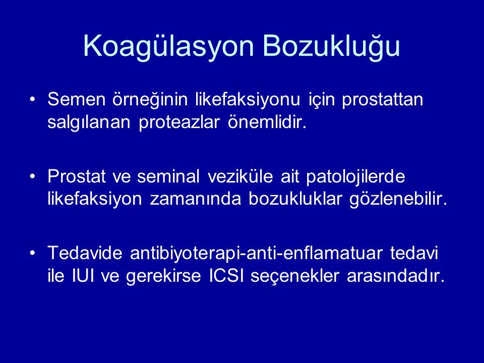 Koagülasyon Bozukluğu Semen örneğinin likefaksiyonu için prostattan salgılanan proteazlar önemlidir. Prostat ve seminal veziküle ait patolojilerde lik