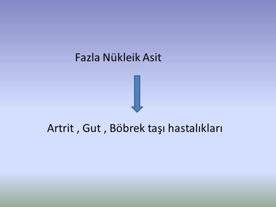 Fazla Nükleik Asit Artrit, Gut, Böbrek taşı hastalıkları