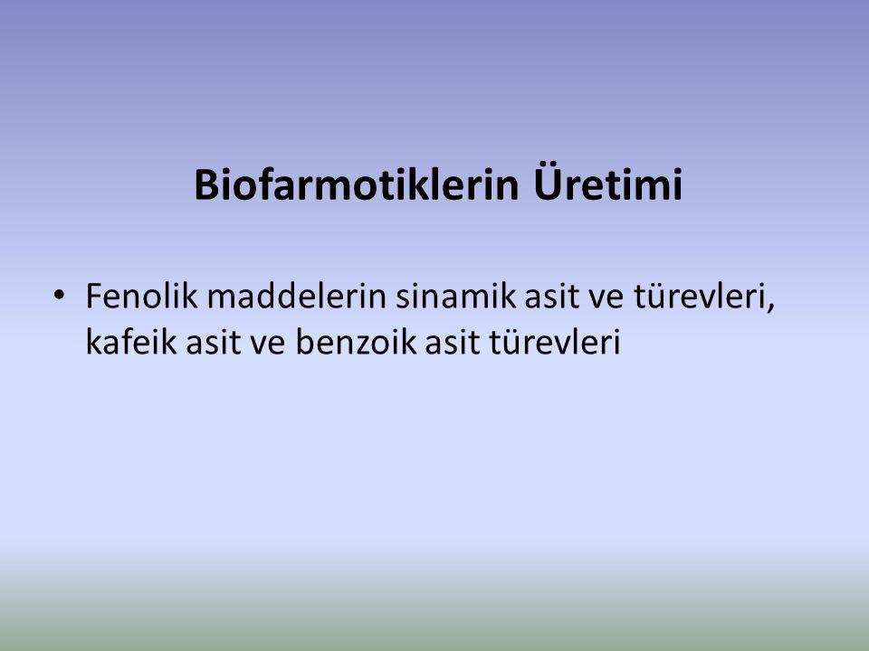 Biofarmotiklerin Üretimi Fenolik maddelerin sinamik asit ve türevleri, kafeik asit ve benzoik asit türevleri