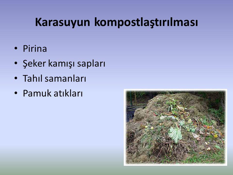 Karasuyun kompostlaştırılması Pirina Şeker kamışı sapları Tahıl samanları Pamuk atıkları