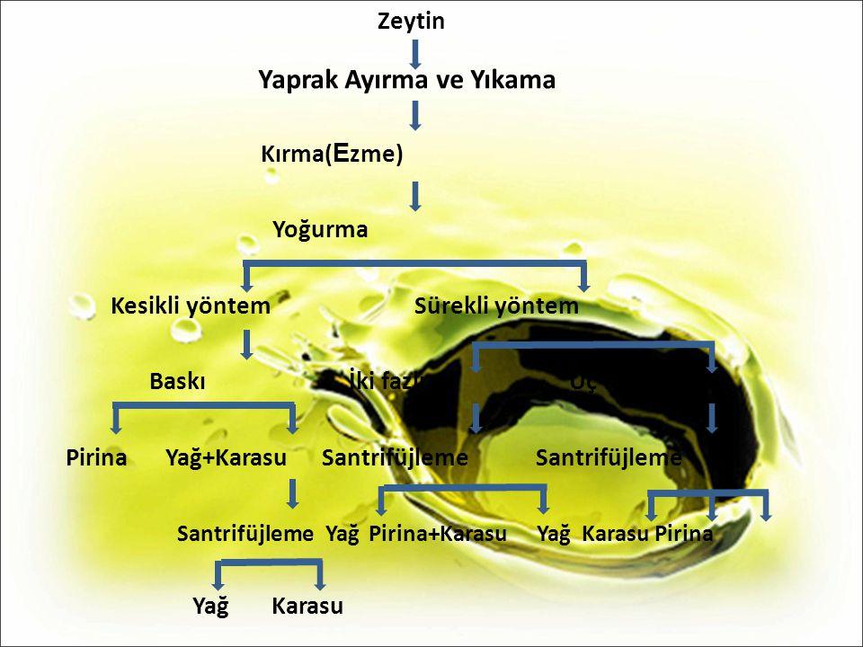 Zeytin Yaprak Ayırma ve Yıkama Kırma( E zme) Yoğurma Kesikli yöntem Sürekli yöntem Baskı İki fazlı Üç fazlı Pirina Yağ+Karasu Santrifüjleme Santrifüjl