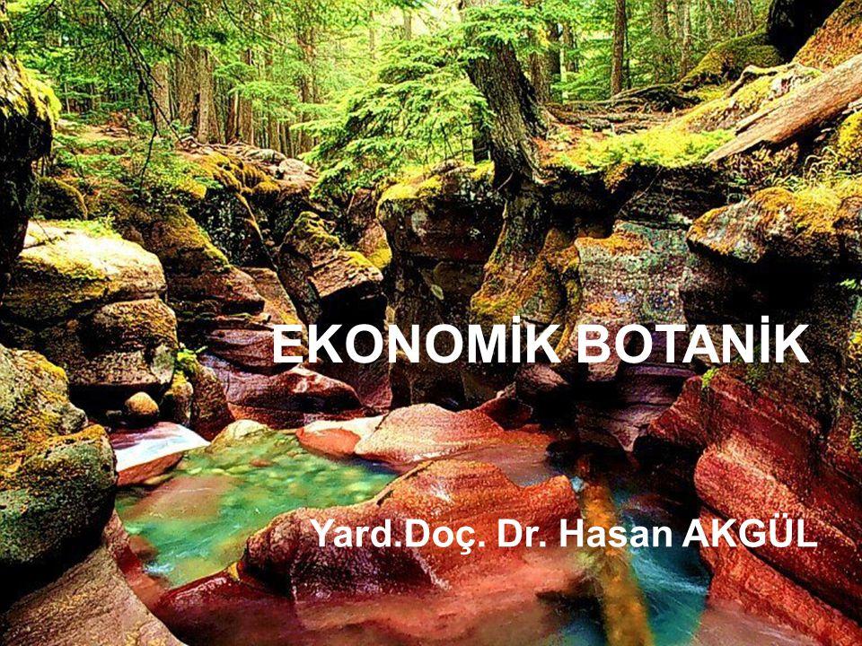 EKONOMİK BOTANİK Ekonomik Botanik,İnsanların gereksinimlerine cevap veren ve çoğu kendi tarafından yetiştirilen,ekonomik hayatımızda önemli yeri olan bitki türlerini inceleyen bir Botanik dalıdır.