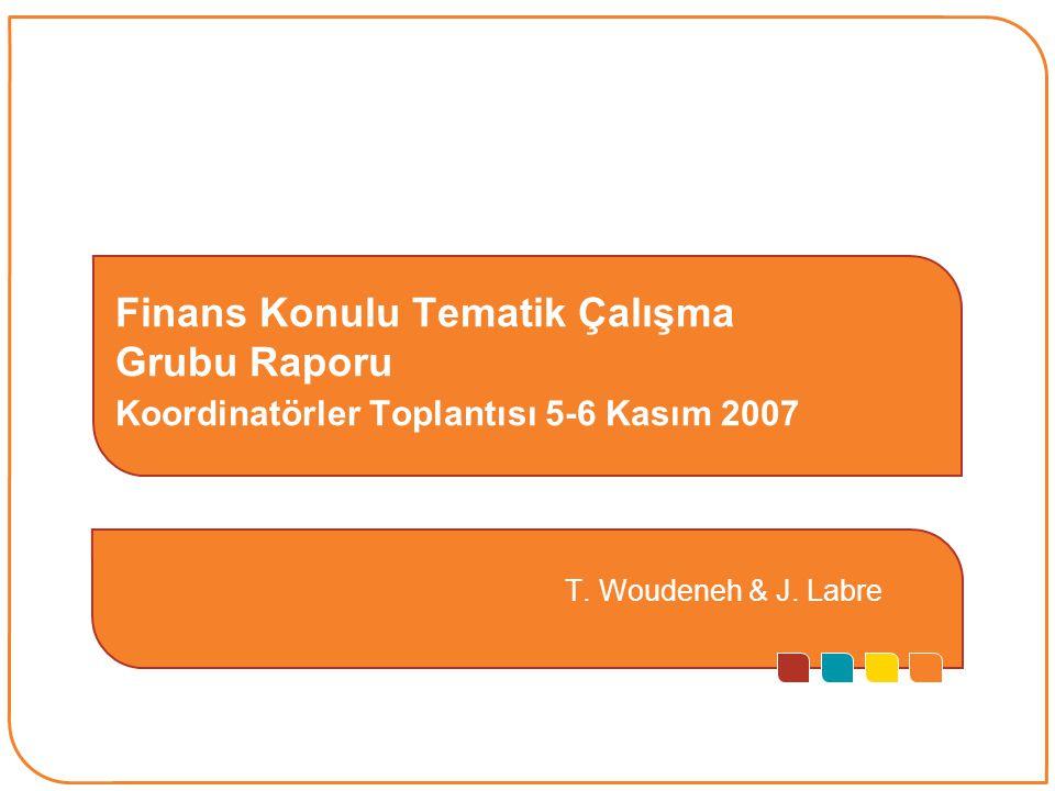 1 Finans Konulu Tematik Çalışma Grubu Raporu Koordinatörler Toplantısı 5-6 Kasım 2007 T.