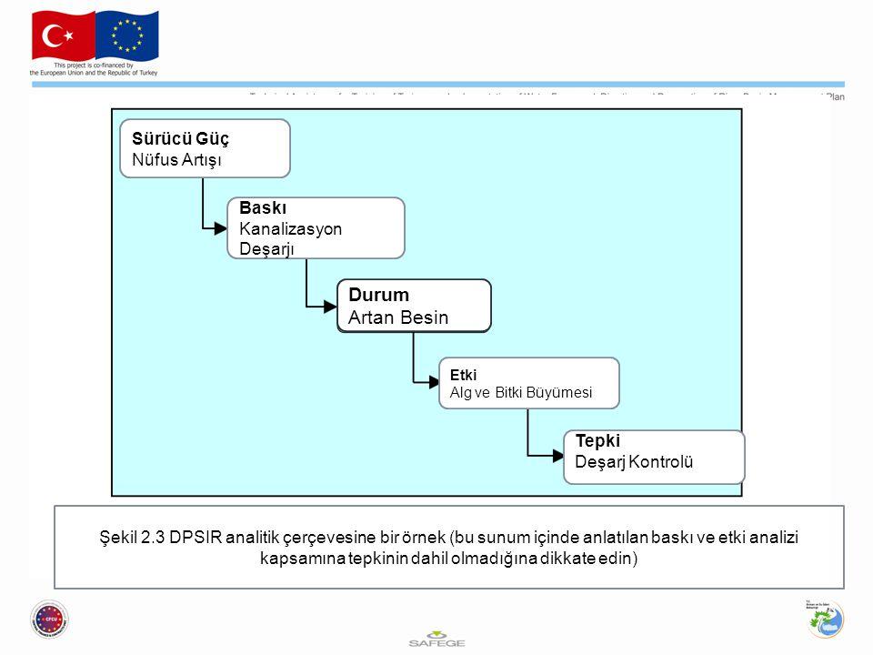Sürücü Güç Nüfus Artışı Baskı Kanalizasyon Deşarjı Etki Alg ve Bitki Büyümesi Tepki Deşarj Kontrolü Şekil 2.3 DPSIR analitik çerçevesine bir örnek (bu sunum içinde anlatılan baskı ve etki analizi kapsamına tepkinin dahil olmadığına dikkate edin) Durum Artan Besin