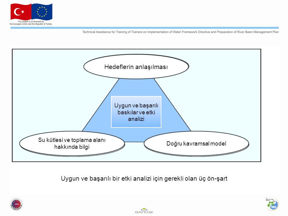 Hedeflerin anlaşılması Su kütlesi ve toplama alanı hakkında bilgi Doğru kavramsal model Uygun ve başarılı baskılar ve etki analizi Uygun ve başarılı bir etki analizi için gerekli olan üç ön-şart