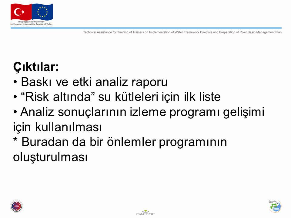 Çıktılar: Baskı ve etki analiz raporu Risk altında su kütleleri için ilk liste Analiz sonuçlarının izleme programı gelişimi için kullanılması * Buradan da bir önlemler programının oluşturulması