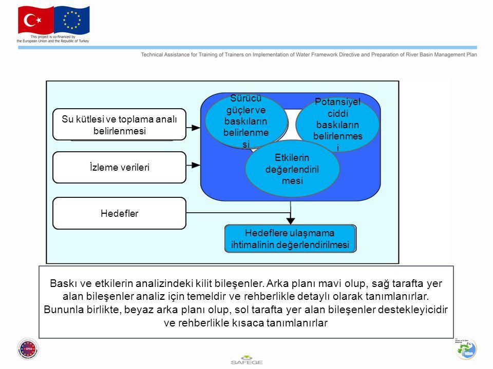 Tablo 2.2: Baskı ve etki analizlerinde kullanılan DPSIR çerçevesi TerimTanım Sürücü çevresel bir etkisi olabilecek antropojenik bir faaliyet (örneğin, tarım, sanayi gibi) Baskı sürücünün doğrudan etkisi (örneğin, su akışını ya da su kimyasında bir değişime neden olabilecek bir etki) Durum hem doğal hem de antropojenik faktörler sonucu su kütlesinin durumu (örneğin, fiziksel, kimyasal ve biyolojik özellikler) Etkibaskının çevresel etkisi (örneğin, ölen balıklar, değişen ekosistem) Tepki su kütlesi durumunun iyileştirilmesi için alınan tedbirler (örneğin, su çekiminin engellenmesi, nokta kaynak deşarjının limitlenmesi, tarım için iyi uygulamalar rehberlerinin geliştirilmesi gibi)