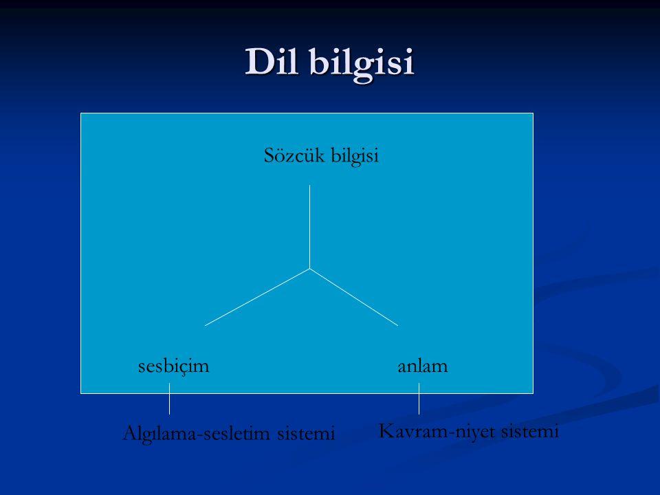 Dil bilgisi Sözcük bilgisi sesbiçimanlam Algılama-sesletim sistemi Kavram-niyet sistemi