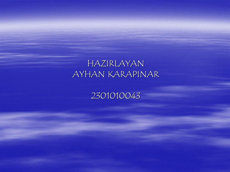HAZIRLAYAN AYHAN KARAPINAR 2301010043