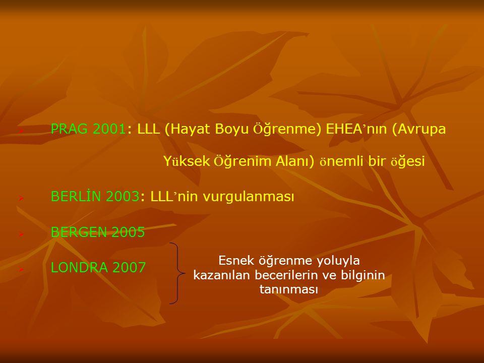   PRAG 2001: LLL (Hayat Boyu Ö ğrenme) EHEA ' nın (Avrupa Y ü ksek Ö ğrenim Alanı) ö nemli bir ö ğesi   BERLİN 2003: LLL ' nin vurgulanması   BERGEN 2005   LONDRA 2007 Esnek öğrenme yoluyla kazanılan becerilerin ve bilginin tanınması