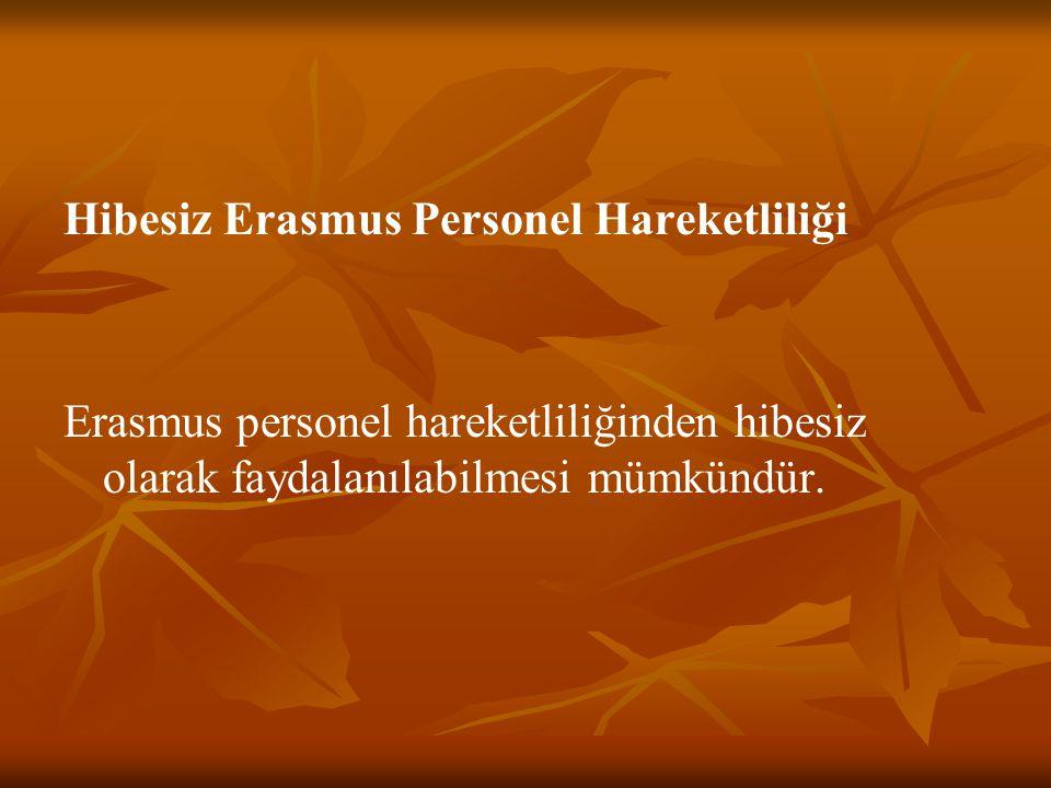 Hibesiz Erasmus Personel Hareketliliği Erasmus personel hareketliliğinden hibesiz olarak faydalanılabilmesi mümkündür.