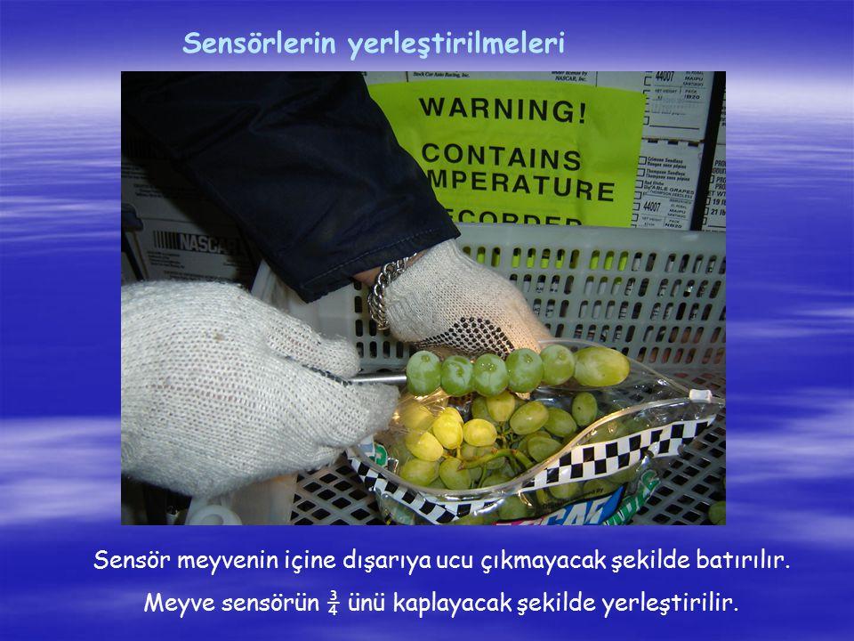 Sensörlerin yerleştirilmeleri Sensör meyvenin içine dışarıya ucu çıkmayacak şekilde batırılır. Meyve sensörün ¾ ünü kaplayacak şekilde yerleştirilir.