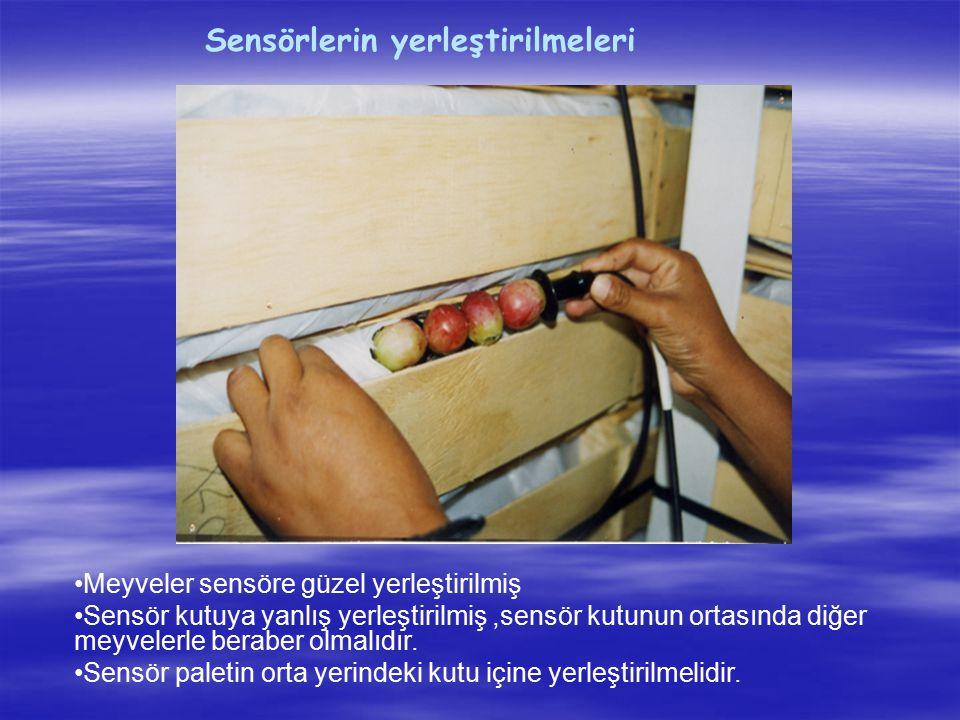 Sensörlerin yerleştirilmeleri Meyveler sensöre güzel yerleştirilmiş Sensör kutuya yanlış yerleştirilmiş,sensör kutunun ortasında diğer meyvelerle bera