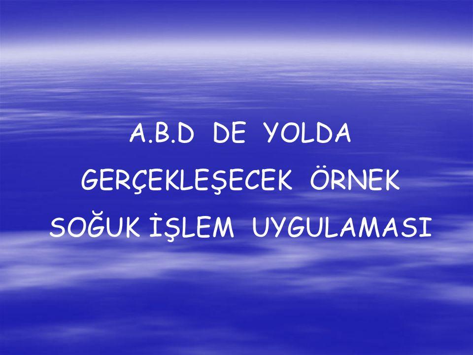 A.B.D DE YOLDA GERÇEKLEŞECEK ÖRNEK SOĞUK İŞLEM UYGULAMASI