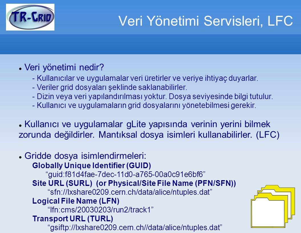 Veri Yönetimi Servisleri, LFC Veri yönetimi nedir.