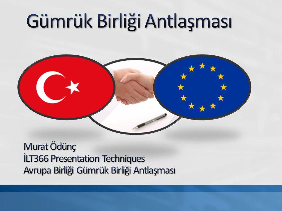 Tarafların vergiden birbirlerini muhaf tutması Birlik dışında kalan ülkeler için ortak gümrük tarifelerinin uygulanması