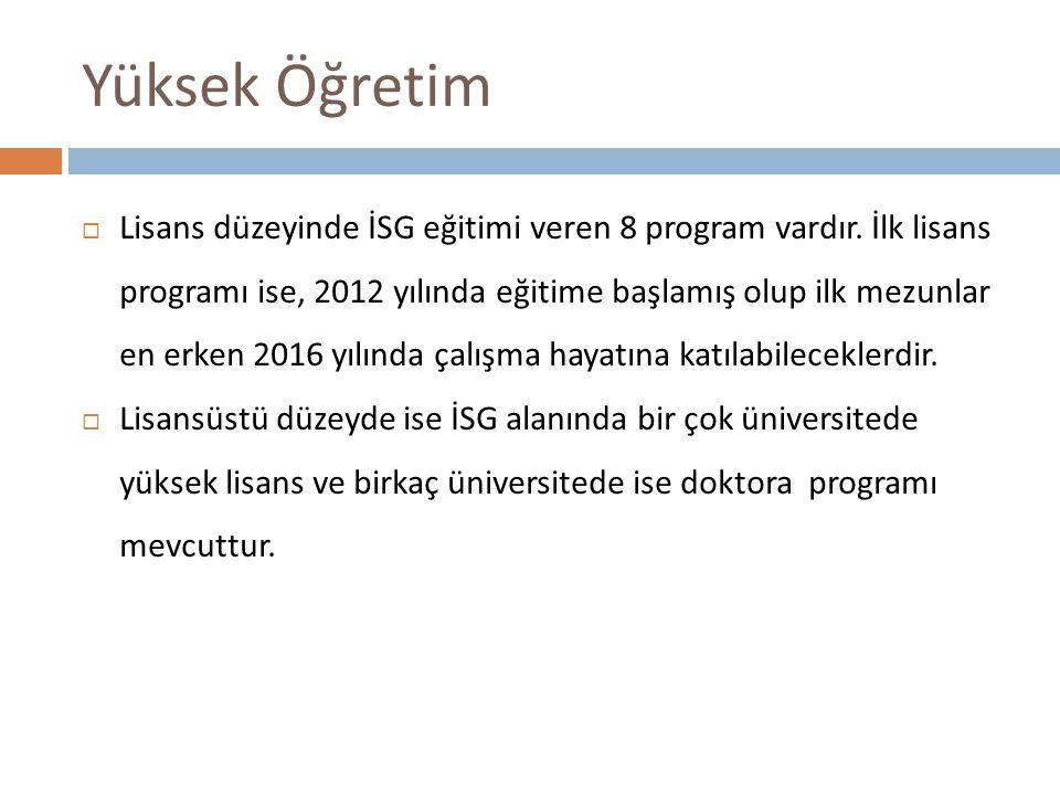 Yüksek Öğretim  Lisans düzeyinde İSG eğitimi veren 8 program vardır.