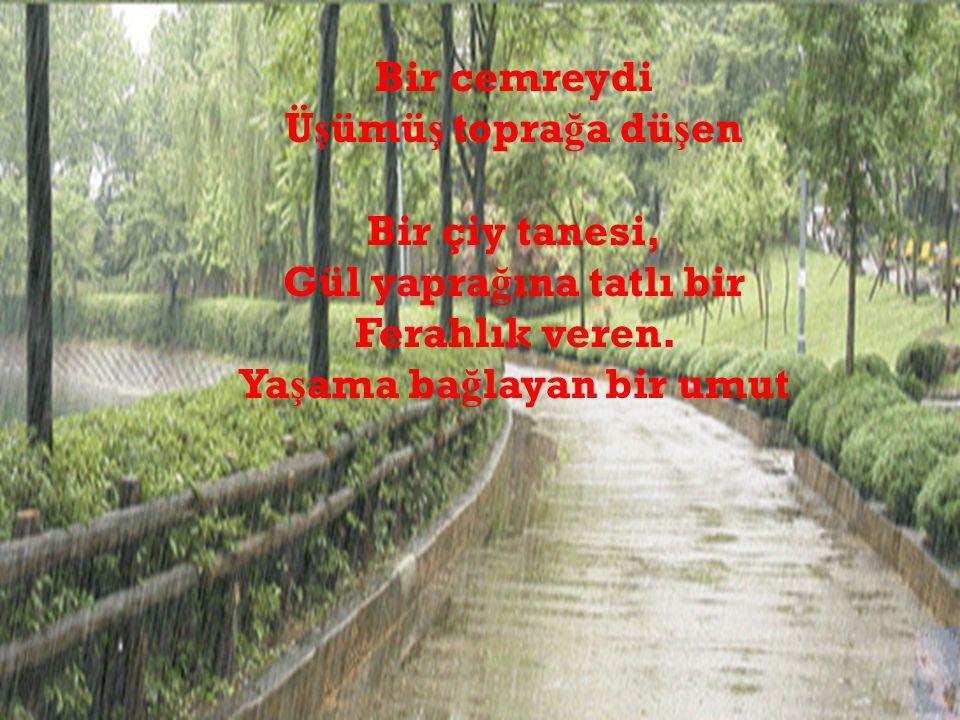 LÂL BİR MASAL