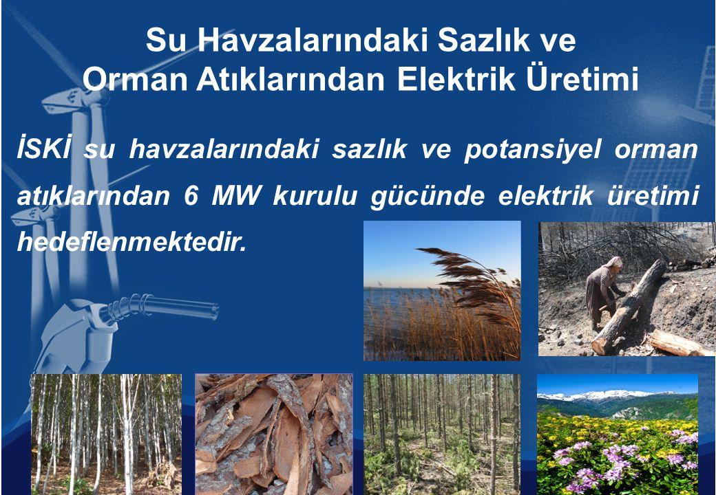 İSKİ su havzalarındaki sazlık ve potansiyel orman atıklarından 6 MW kurulu gücünde elektrik üretimi hedeflenmektedir. Su Havzalarındaki Sazlık ve Orma