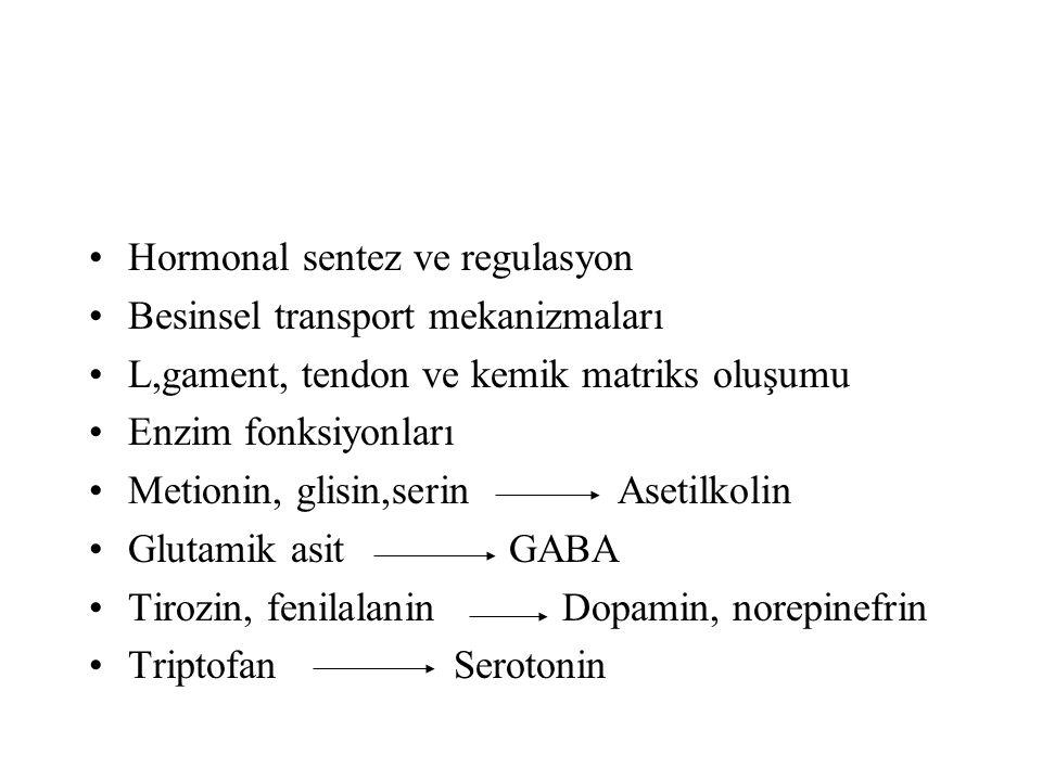 Hormonal sentez ve regulasyon Besinsel transport mekanizmaları L,gament, tendon ve kemik matriks oluşumu Enzim fonksiyonları Metionin, glisin,serin As