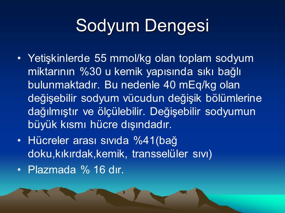Sodyum Dengesi Yetişkinlerde 55 mmol/kg olan toplam sodyum miktarının %30 u kemik yapısında sıkı bağlı bulunmaktadır. Bu nedenle 40 mEq/kg olan değişe