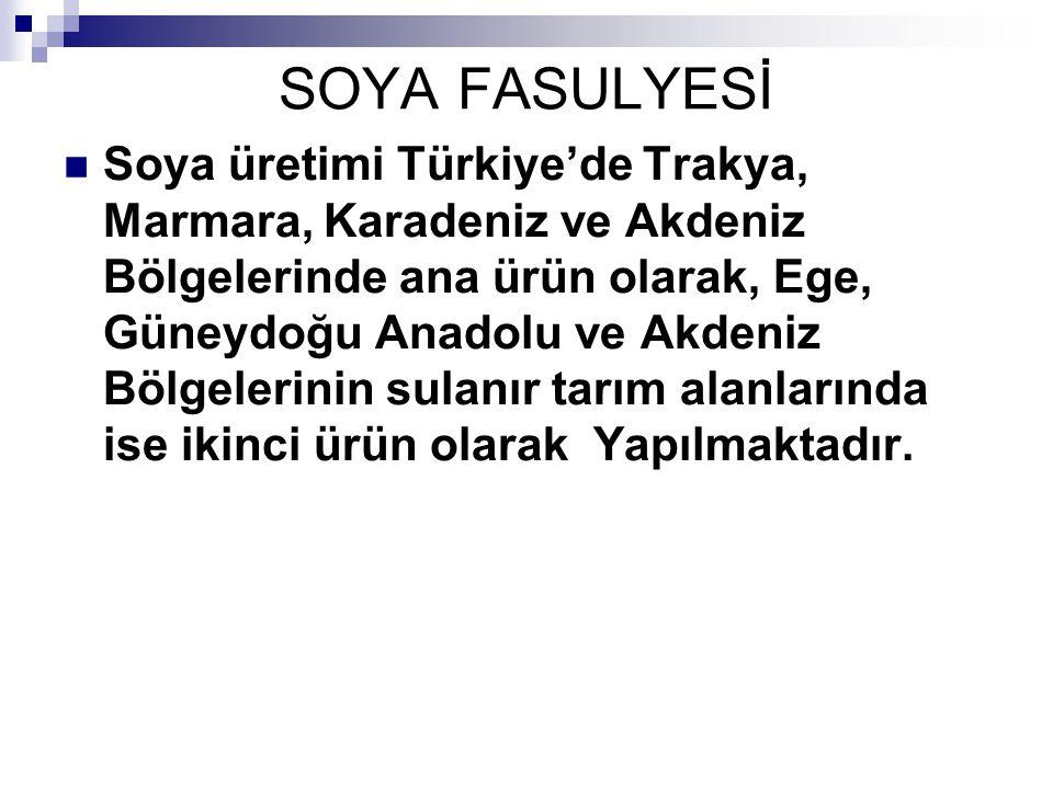 SOYA FASULYESİ Soya üretimi Türkiye'de Trakya, Marmara, Karadeniz ve Akdeniz Bölgelerinde ana ürün olarak, Ege, Güneydoğu Anadolu ve Akdeniz Bölgeleri