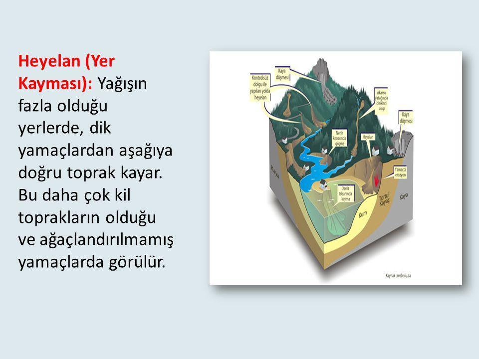 Türkiye'de çığ en çok Doğu Anadolu Bölgesi'ndeki dağlık kesimlerde görülür. Yandaki fotoğraflarda Ağrı İlimizde yaşanan çığ felaketi görülmektedir.