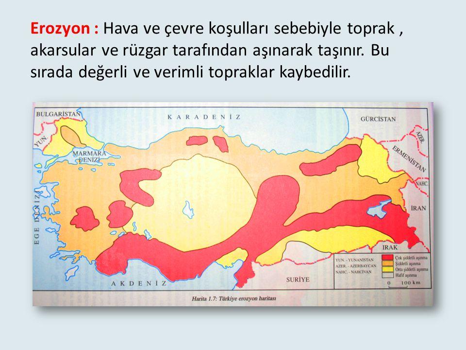 Ülkemizde heyelan daha çok Karadeniz Bölgesinde Görülür. Artvin Yalova