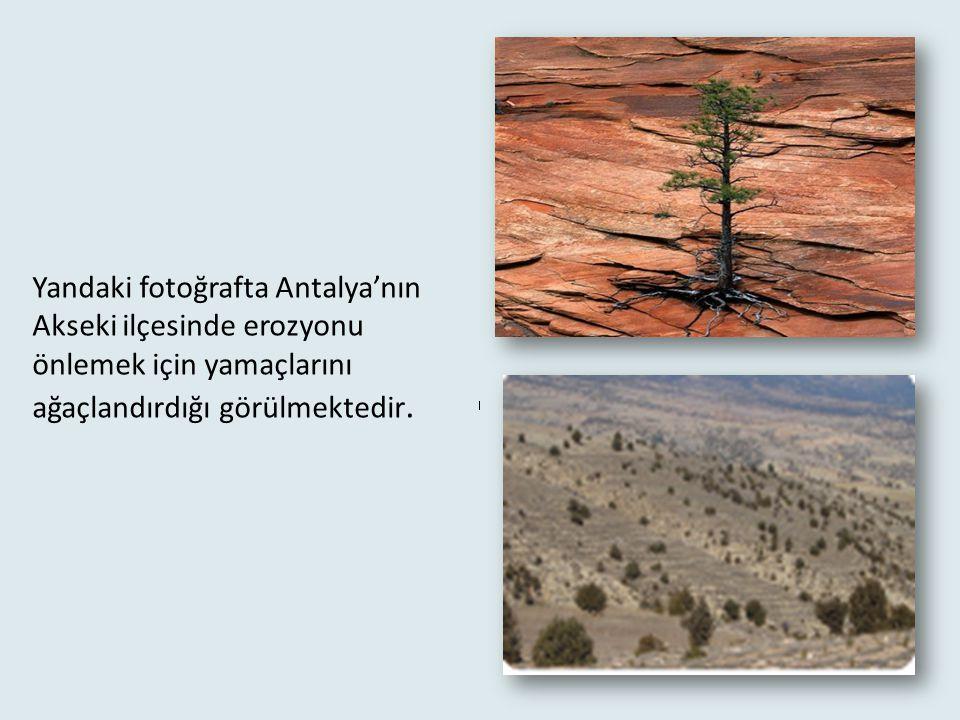 Yurdumuzda her yıl Kıbrıs Adası büyüklüğünde verimli toprak erozyona uğramaktadır. Ülkemizde İç Anadolu ve Güney Doğu Anadolu Bölgeleri'nde erozyon da