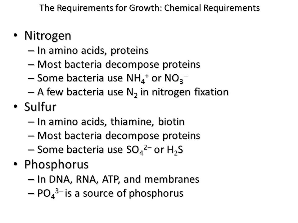 Nitrogen Nitrogen – In amino acids, proteins – Most bacteria decompose proteins – Some bacteria use NH 4 + or NO 3  – A few bacteria use N 2 in nitro