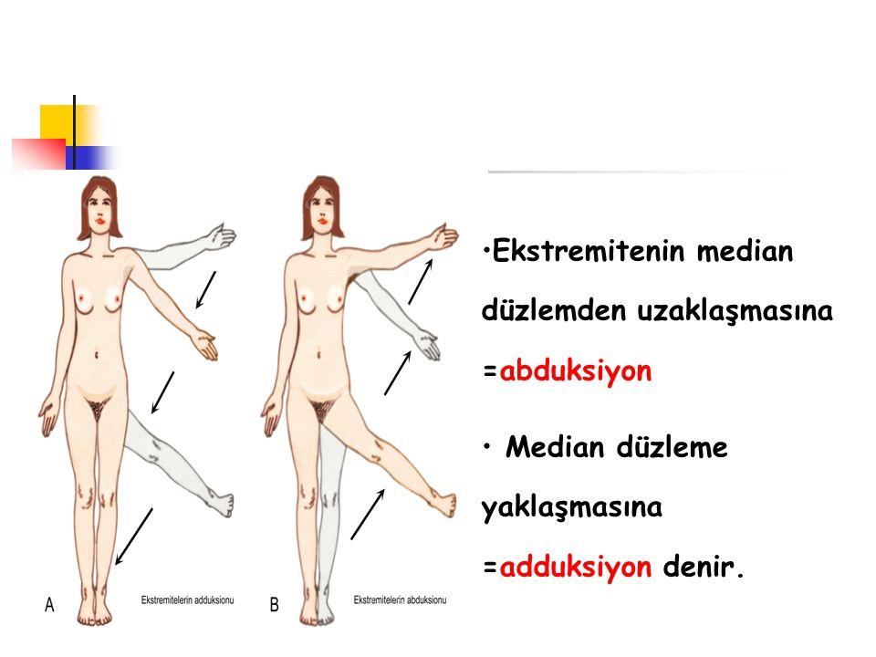 Ekstremitenin median düzlemden uzaklaşmasına =abduksiyon Median düzleme yaklaşmasına =adduksiyon denir.