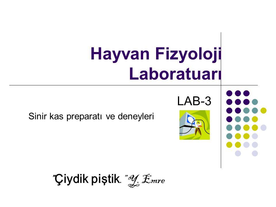 """Hayvan Fizyoloji Laboratuarı LAB-3 Sinir kas preparatı ve deneyleri """" Çiydik piştik."""" Y. Emre"""