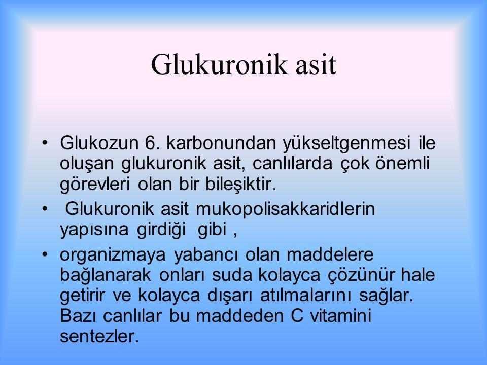 Glukuronik asit Glukozun 6.