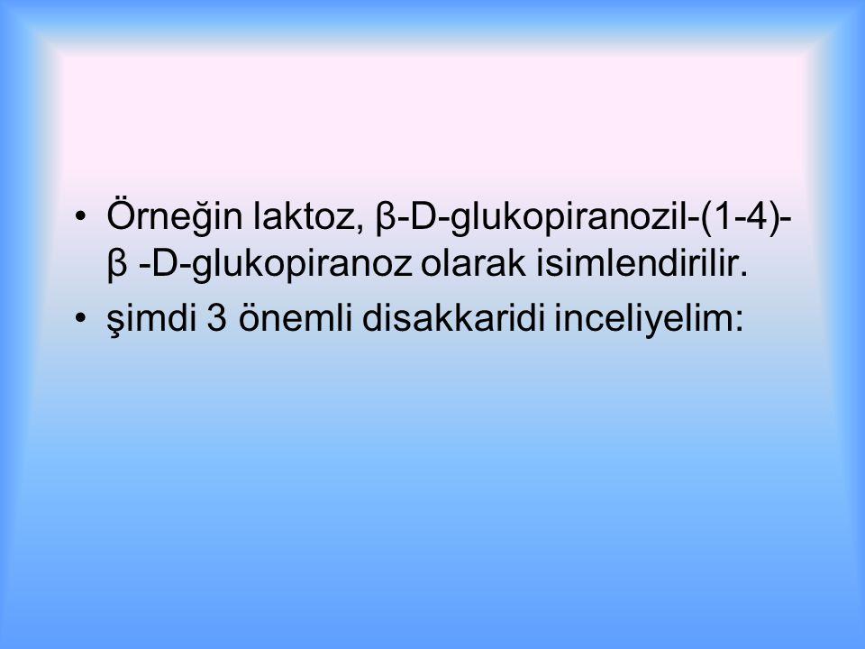 Örneğin laktoz, β-D-glukopiranozil-(1-4)- β -D-glukopiranoz olarak isimlendirilir.