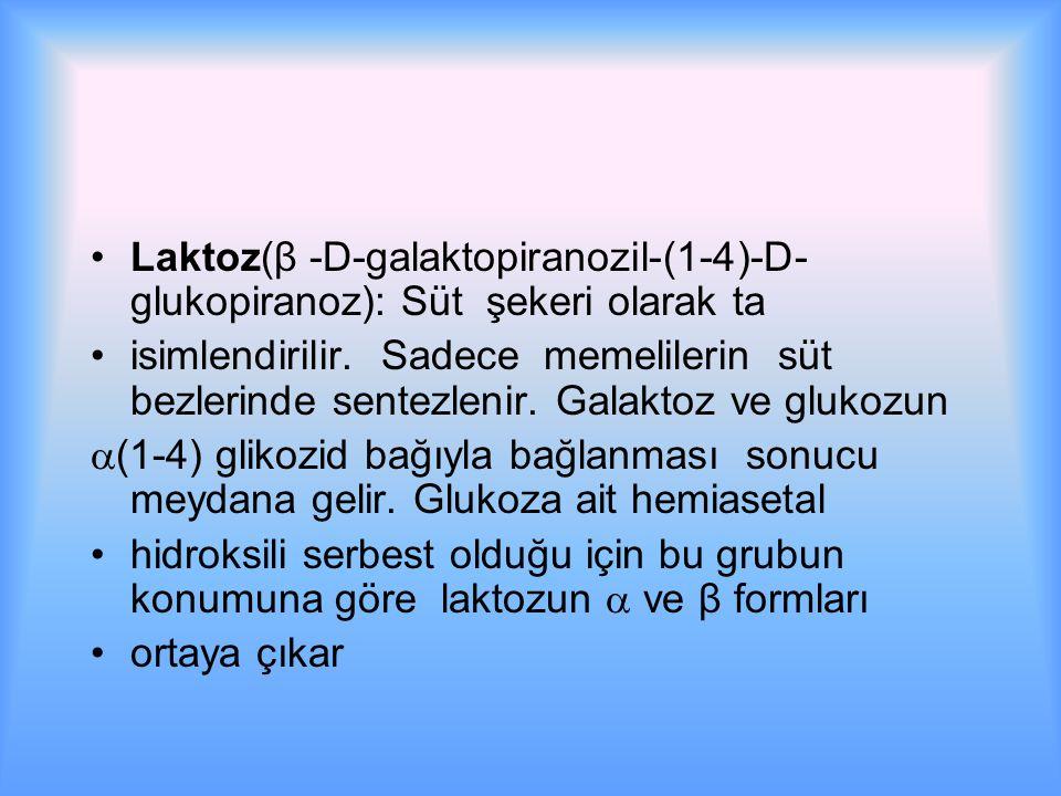 Laktoz(β  -D-galaktopiranozil-(1-4)-D- glukopiranoz): Süt şekeri olarak ta isimlendirilir.
