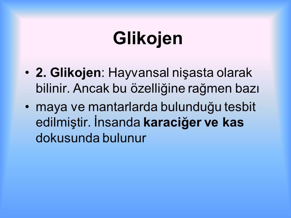 Glikojen 2.Glikojen: Hayvansal nişasta olarak bilinir.