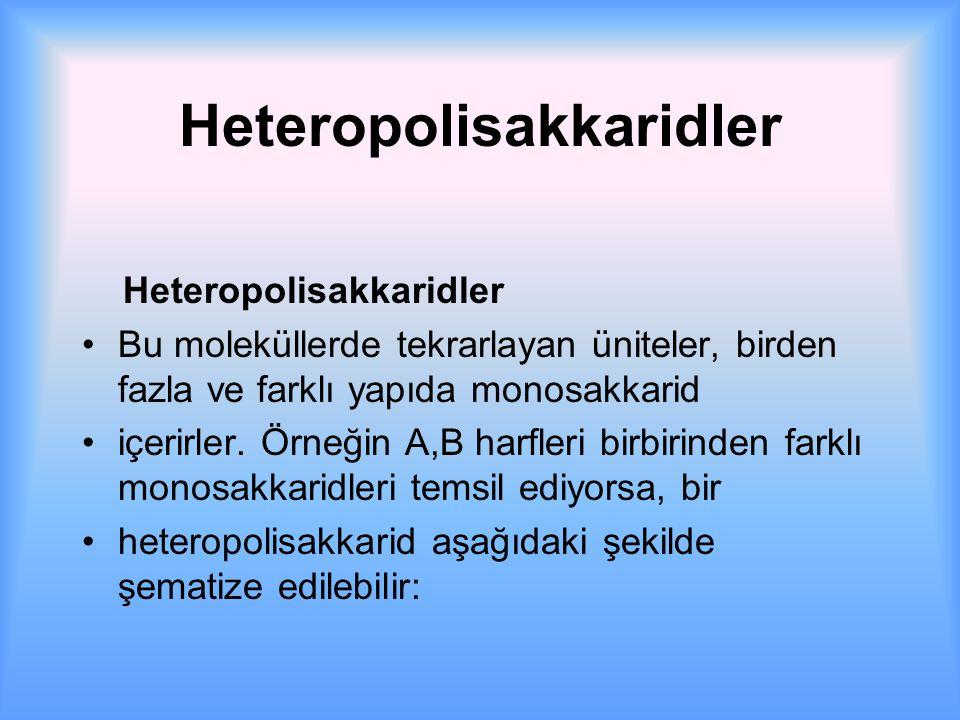 Heteropolisakkaridler Heteropolisakkaridler Bu moleküllerde tekrarlayan üniteler, birden fazla ve farklı yapıda monosakkarid içerirler.