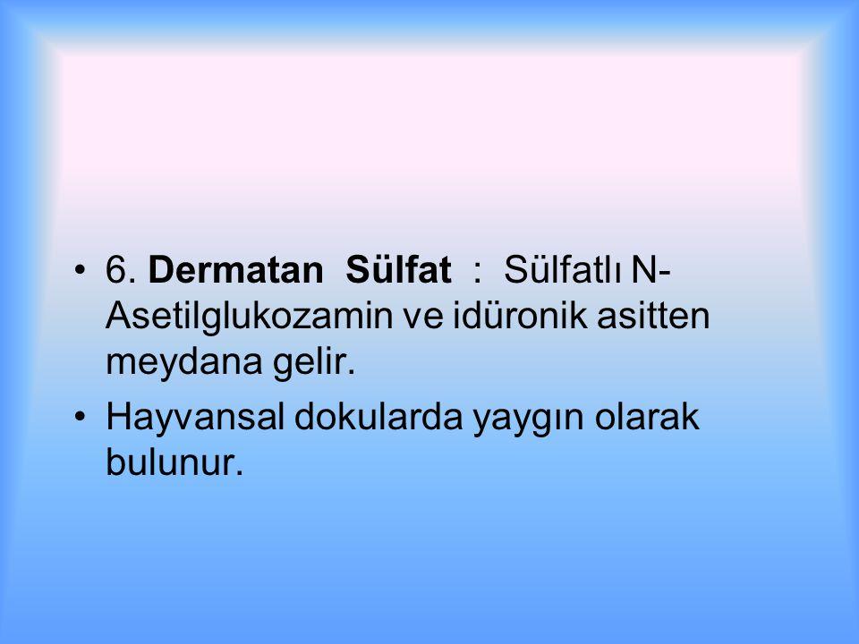6.Dermatan Sülfat : Sülfatlı N- Asetilglukozamin ve idüronik asitten meydana gelir.