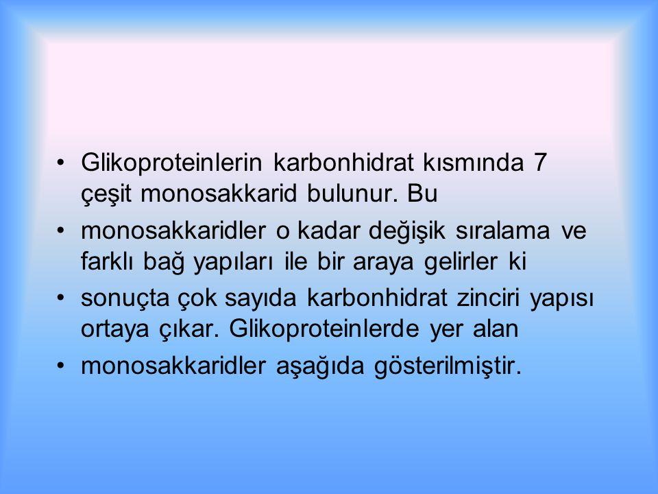 Glikoproteinlerin karbonhidrat kısmında 7 çeşit monosakkarid bulunur.