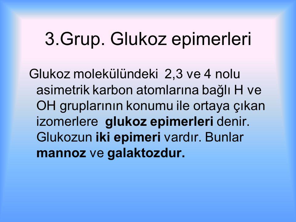 3.Grup.